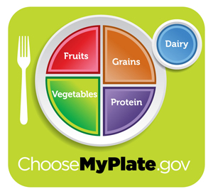 Healthy Diet Plan Plate not Pyramid